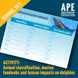 Dolphins in Captivity | Classification Revision Worksheet