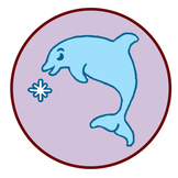 Dolphins song, fun facts set to pretty melody