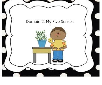 Kindergaten Domain 2:  The Five Senses EngageNY