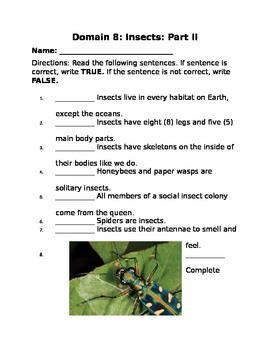 Domain 8: Insects 2 Common Core Assessments