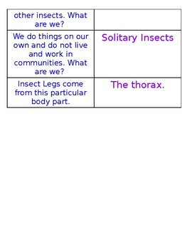 Domain 8 Insects Riddle Cards