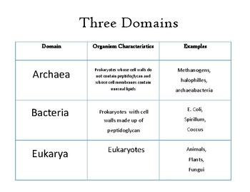 Domain Sort