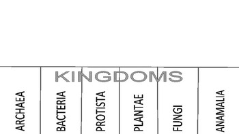 Domain and Kingdom Foldable