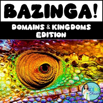 Domains & Kingdoms Bazinga Game