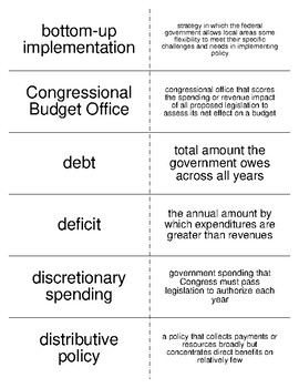 Domestic Policy Vocabulary Flash Cards for American Government