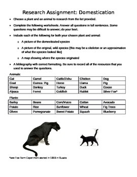 Domestication Research Assignment