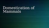Domestication of Mammals Lecture