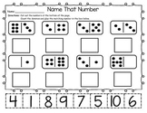 Domino Counting