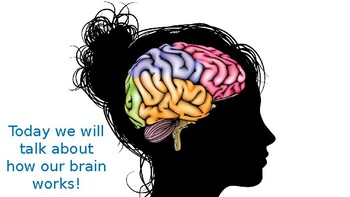 Don't Flip Your Lid: Teaching about the Brain