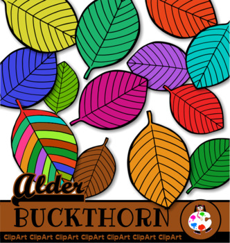 Doodle Alder Buckthorn Leaf Clip Art