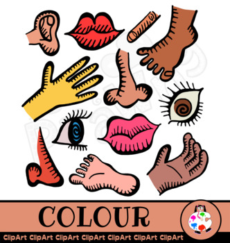 Doodle Anatomy Clip Art Icons