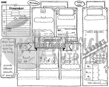 Doodle Note, Doodle Handout, 6 Classes of Nutrients, Nutrition