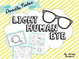 Doodle Notes: Light and the Human Eye