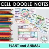 Doodle Notes for Cells (Plant and Animal)