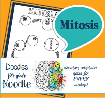 Doodles for Your Noodle - Mitosis (supports HS-LS1-4)
