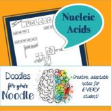 Doodles for Your Noodle - Nucleic Acids (HS-LS1-6)