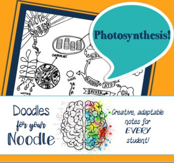 Doodles for Your Noodle - Photosynthesis (HS-LS1-5)