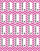 Dots on a 10 Frame (0-10) in Magenta Chevron