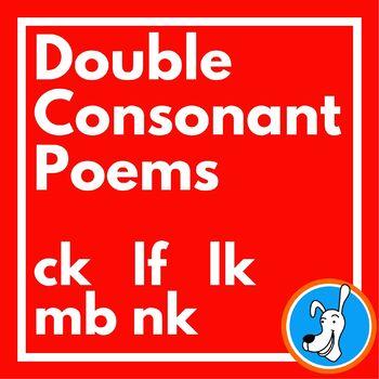 Consonants Double Consonant Poems By Lorrie L Birchall Tpt