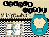 Double Digit Multiplication Owls FREEBIE