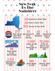 Double Infographic - America and New York by the Numbers (