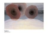 Dove Foghorns Abstract Art Grades 3-4