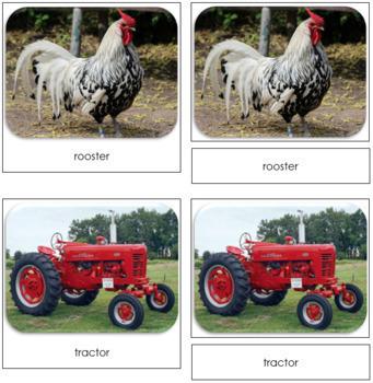 Down On The Farm Safari Toob Cards - Montessori