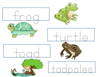 ESL Resource: Pond Poems-Vocabulary and Concept Development- ELL Newcomers Too!