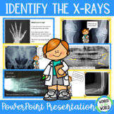 Dr Bones Guess the Body Part PowerPoint Presentation (Skeletons, X-rays)