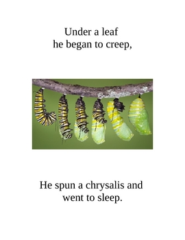 Dr. Jean's Caterpillar Story Songbook