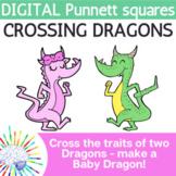 Dragon Punnett Squares Activity: Make a Baby Dragon!