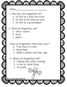 Dragonflies Reading Comprehension