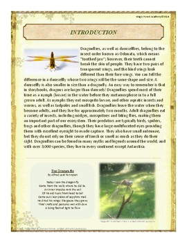 Dragonflies Themed Nature Education Unit-Stage 2 (Magic Forest Academy)