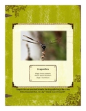 Dragonflies Themed Nature Education Unit-Stage 2 (Magic Fo