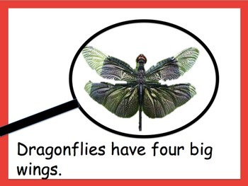 Dragonflies powerpoint and e-book (for Grades 3-5)