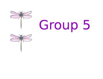 Dragonfly Group Labels