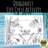 Dragonfly Life Cycle Activity Booklet