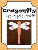 Dragonfly Life Cycle Craft
