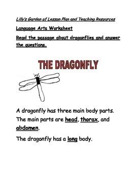 Dragonfly Worksheet