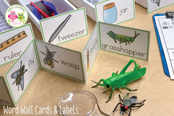 Dramatic Play Center for Insect & Bugs Theme | Entomology Lab Dramatic Play Set