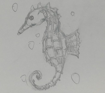 Draw A Seahorse Simple Step By Step