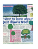 Draw A Tree Lesson Plan and Activity