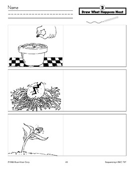 Draw What Happens Next (seed in pot)