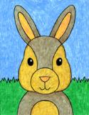 Draw a Bunny Face