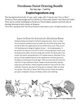 animal habitat coloring pages animal habitat coloring pages animal ... | 350x270
