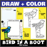 Draw and Color - A Bird in a Boot (One Page Directed Drawing)