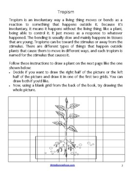 Draw and Explore Science: Ways Plants Move