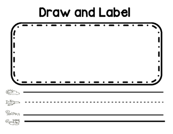 Draw and Label