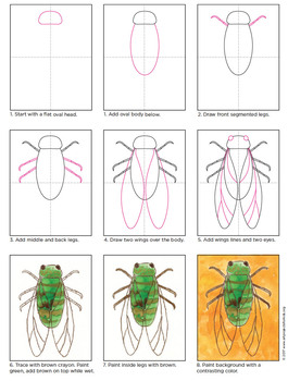 Draw and Paint a Cicada