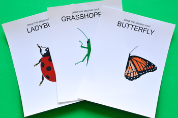 Draw the Missing Half of an Insect: Art Prompts for Teaching Symmetry